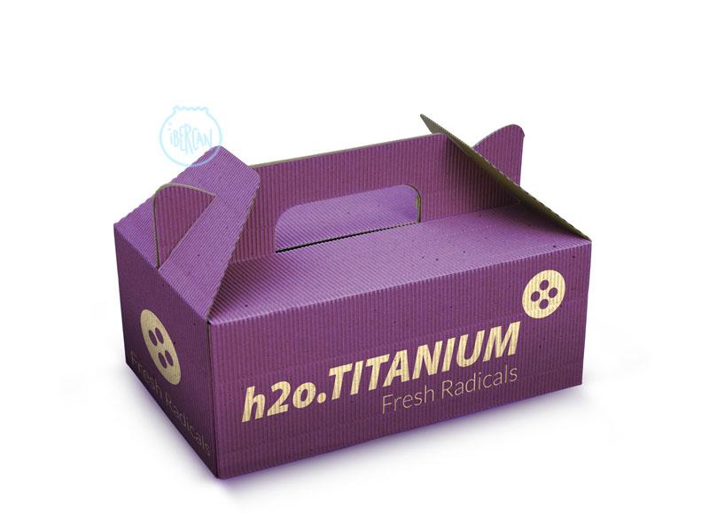 Esterilizción mediante Radicales Hidroxilo H2o TITANIUM