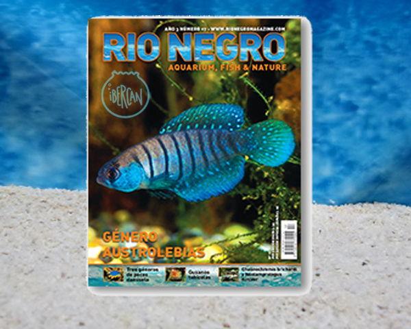 Revista Rio Negro nº17
