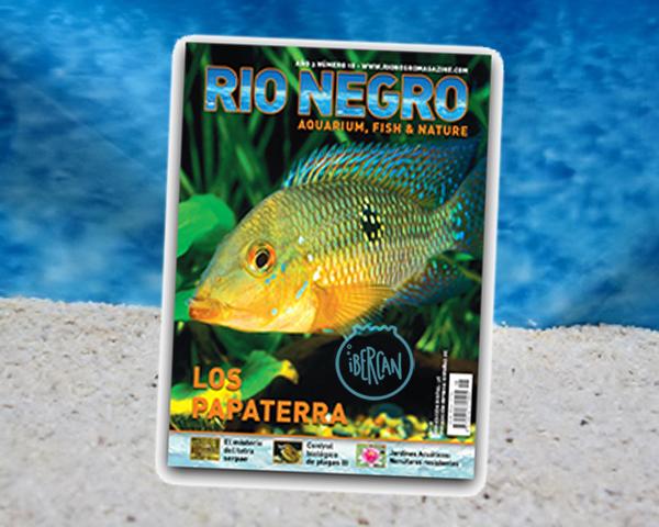 Revista Rio Negro nº18