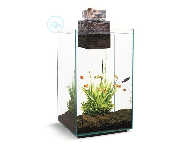 Acuarios Fluval Chi son el estilo mismo dentro del mundo de acuarios