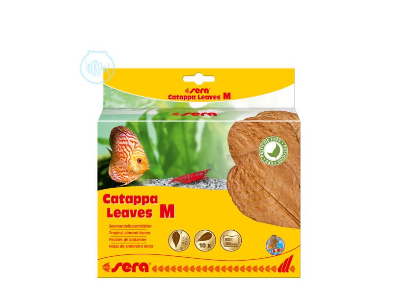 Las Sera Catappa Leaves talla M