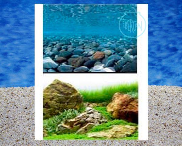 Fondo decorativo acuarios rio