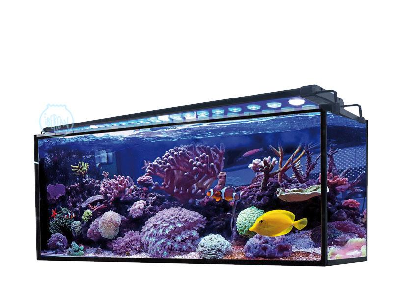 Acuario Marino Aqua Ocean 180L