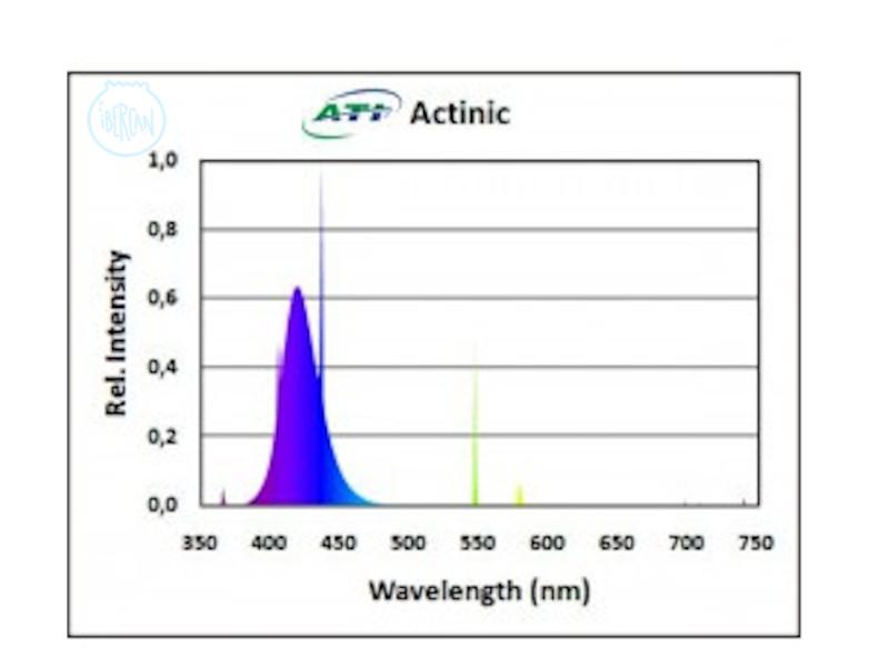 ATI Actinic es un tubo T5 que produce una intensa luz actínica