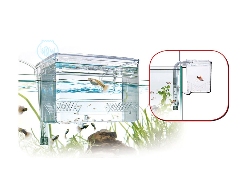 Paridera exterior acuarios wave breeding box 0 7l ibercan for Paridera para peces