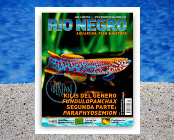 Rio Negro revista