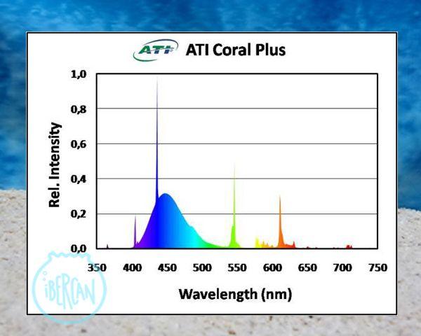 ATI Coral plusl tubo T5 para acuarios marinos