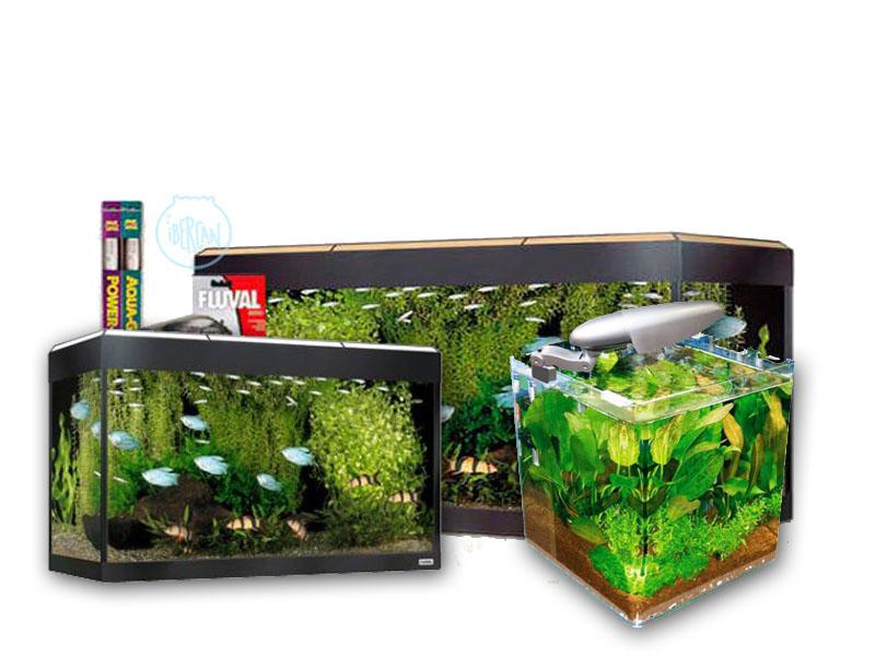 Kit completo acuario -